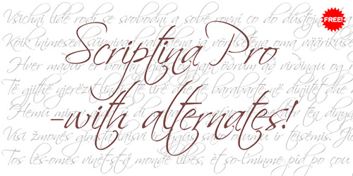 22 scriptina-pro