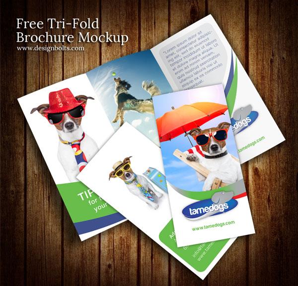 Tri Fold Brochure Design Mockup PSD