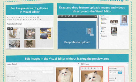 WordPress 3.9 Features Explained In One Complete Infographic