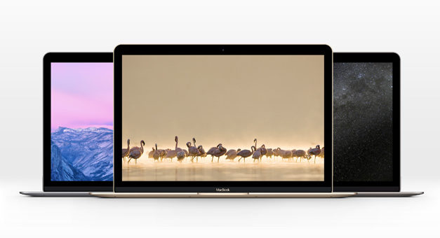 The New MacBook Psd Mockup – Free PSD