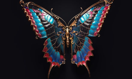 Jewel insects by Sasha Vinogradova